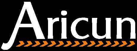 Aricun